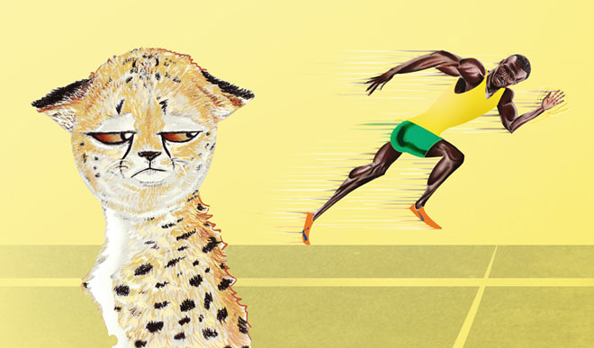 Cheetah versus Usain Bolt illustration